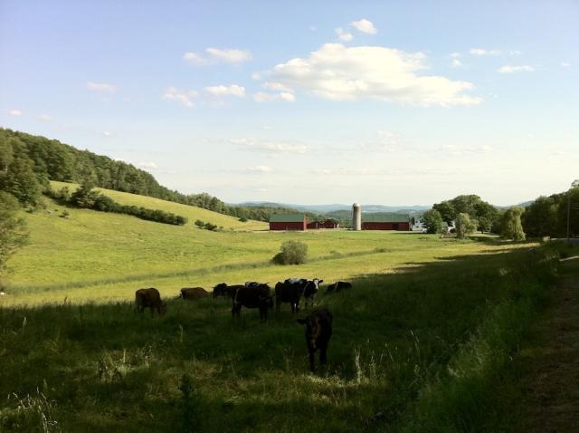 Pastoral Farm