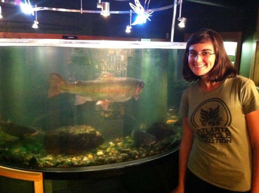 Rainbow Trout aquarium